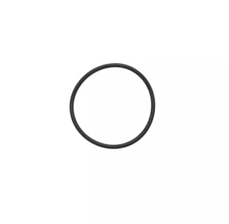 O Ring fuer Cappuccinatore V1 von Saeco 0